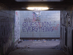 question everything,