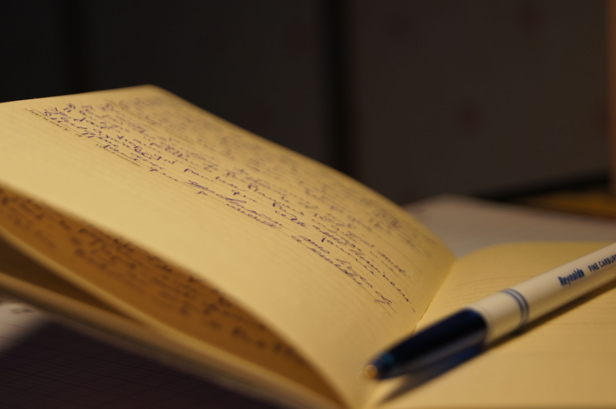 lucid dreaming rut,dream journal,