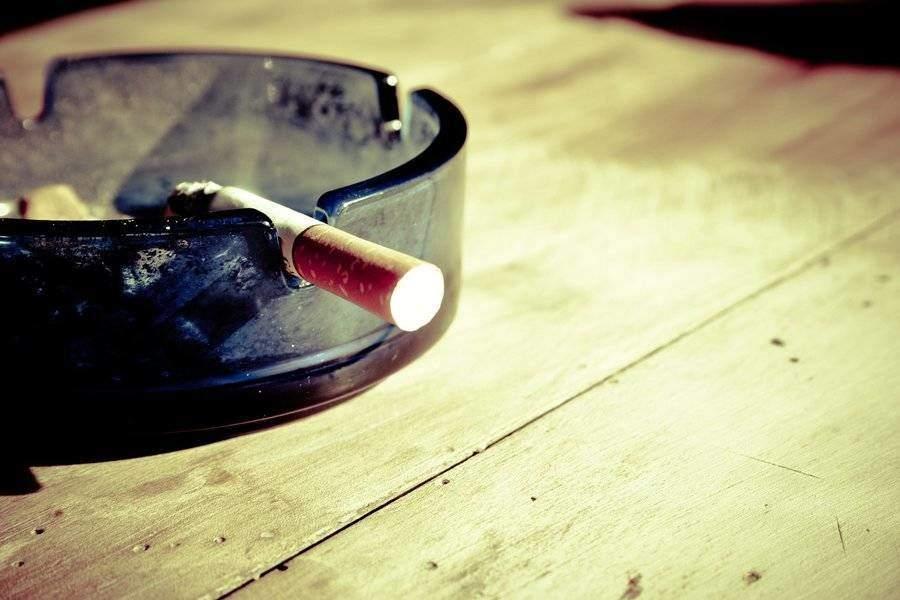 Smoking the dream herb
