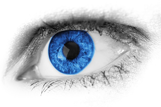 Rapid eye movement proves lucid dreaming