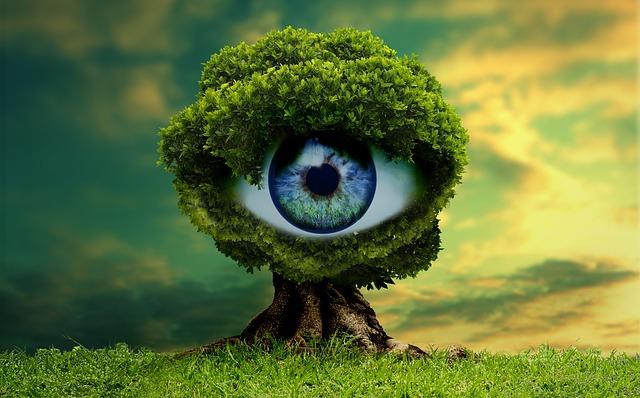 Ultimate Spiritual Guide To The Pineal Gland (Third Eye): Unblocking, Purpose, Warnings